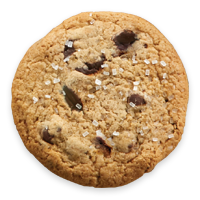 Peanut Butter Oat Chocolate Chip Cookie