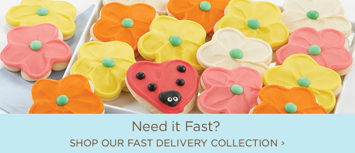 Need it Fast - Shop Our Fast Delivery Collection
