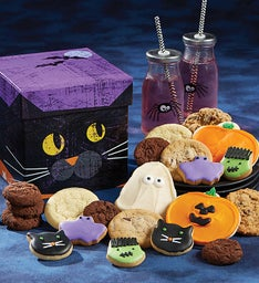 Cat Box of Treats