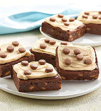Peanut Butter Frosted Buckeye Brownie Sampler