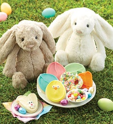 Gifts for kids cookies for kids cheryls easter bunny treats gift negle Image collections