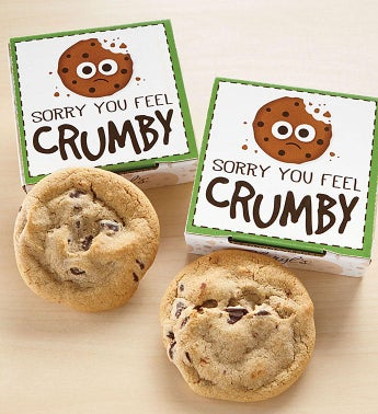 Sorry You Feel Crumby Cookie Card