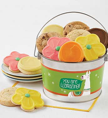 You Are Llamazing Cookie Pail