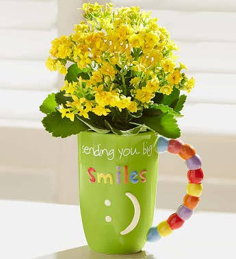 Mugable Full of Blooms Plant