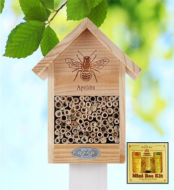 Bee House  Naked Bee Spa Kit