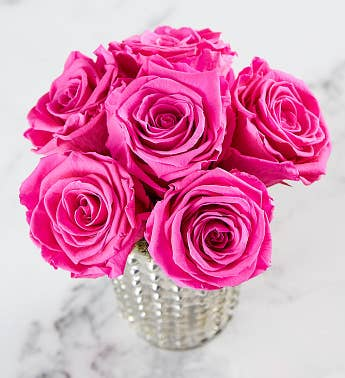 Preserved Pink Roses by Luxe Bloom® – Medium