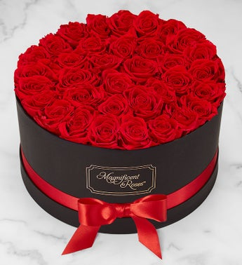 Magnificent Roses® Preserved Roses