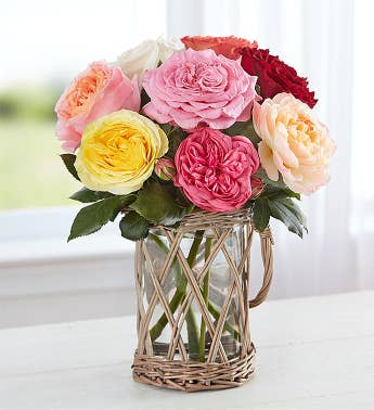 English Country Garden Roses