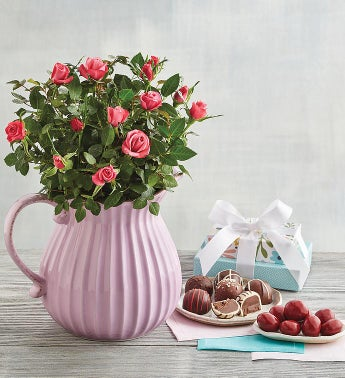 Pink Mini Rose Pitcher Gift
