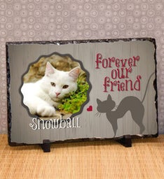 Forever Our Cat Personalized Photo Plaque